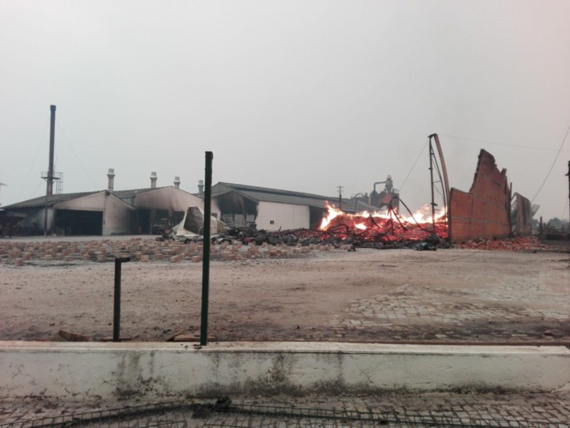 Município de Oliveira do Hospital apoia empresários afetados pelo incêndio