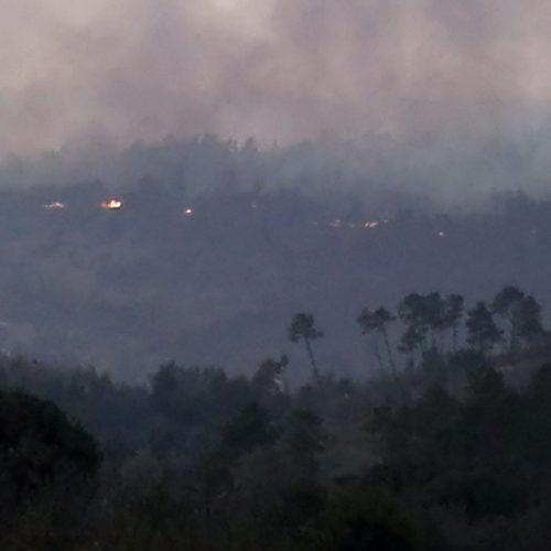 Fogo no concelho de Nelas está em fase de resolução