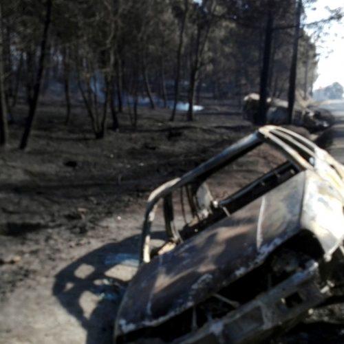 Consulta de Saúde Mental apoia 388 pessoas afetadas pelo incêndio em Oliveira do Hospital