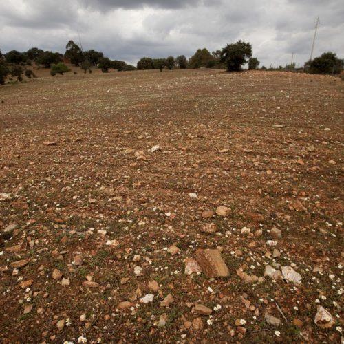 Mais de 80% de Portugal continental em seca severa em setembro