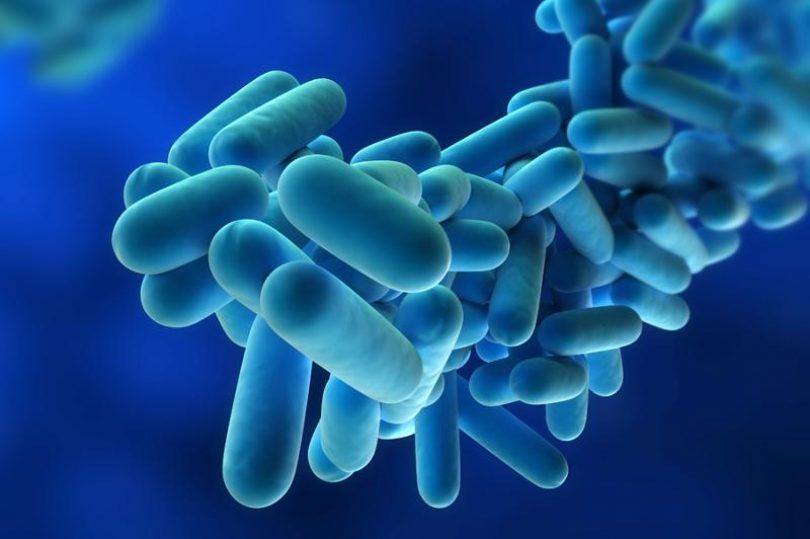 Detetada Legionella no Centro de Saúde de Mangualde