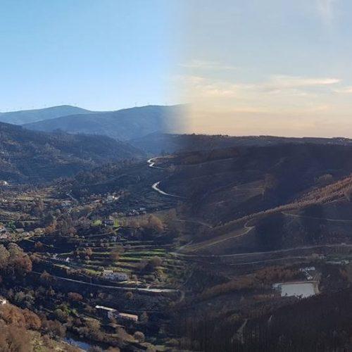 """""""Em Pedrógão via-se muita coisa verde…aqui não se vê nada verde em milhares de hectares"""", referem especialistas em fogo"""