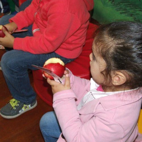 Município de Oliveira do Hospital oferece fruta aos alunos
