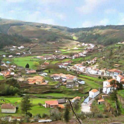 """Grupo """"Pomares no Coração"""" avança com reflorestação da freguesia após o fogo"""