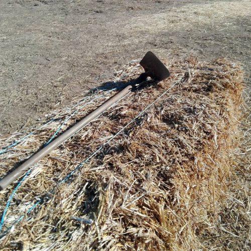 Ministério da Agricultura rejeita críticas dos agricultores de Coimbra