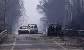 Pedrógão Grande: Livro sobre o concelho é dedicado às vítimas do incêndio