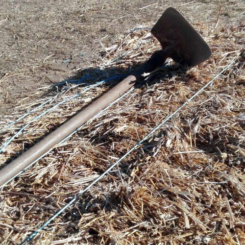 Agricultores e produtores lesados pelos incêndios vão reclamar medidas a Ministro