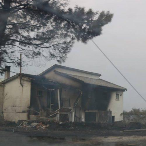 Incêndios: Apenas 172 pessoas pediram ajuda ao Estado para recuperação das casas
