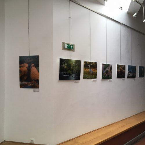 """Casa da Cultura César Oliveira com exposição de fotografia """"Natureza Mágica"""""""