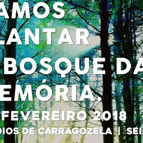 """""""Vamos Plantar o Bosque da Memória"""" em Carragozela"""