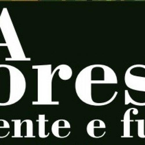 """""""A Floresta- Presente e Futuro"""" em debate no auditório Crédito Agrícola"""