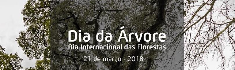 Município de Góis comemora Dia Mundial da Árvore e Dia Internacional das Florestas