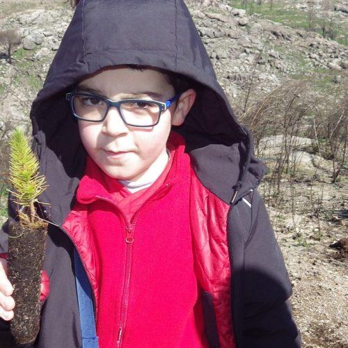 Crianças plantaram mil árvores em ação de reflorestação em Oliveira do Hospital