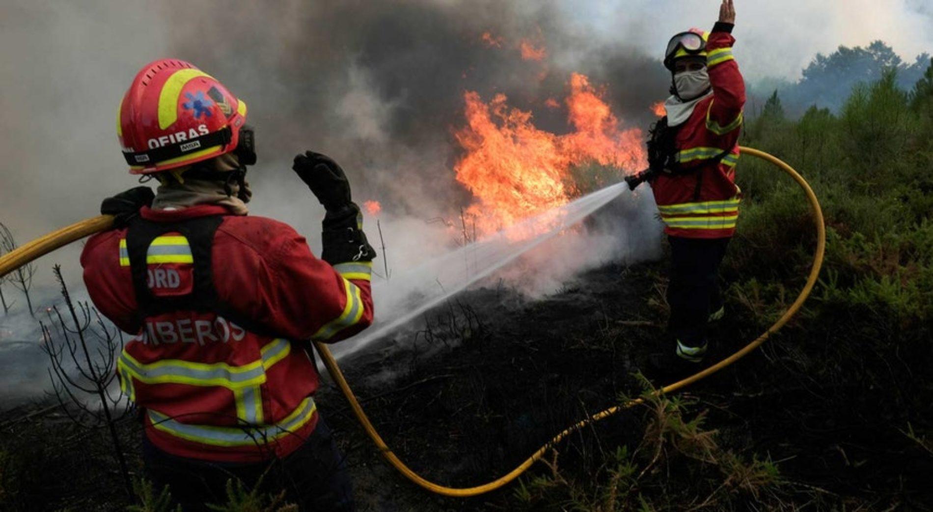 Incêndio em Candosa, concelho de Tábua, mobiliza cerca de 50 bombeiros e dois meios aéreos