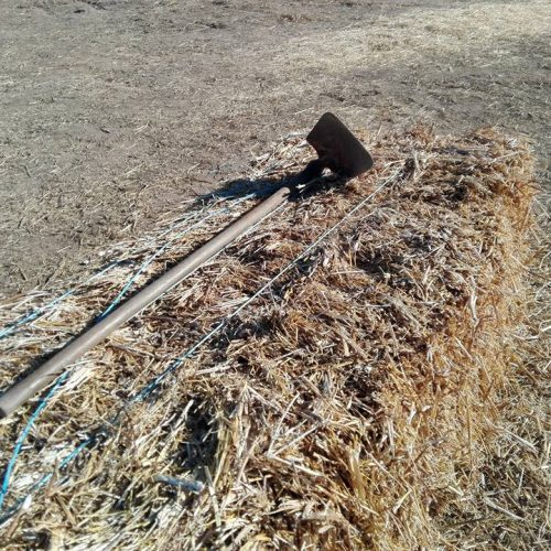 """Agricultores lesados dos incêndios exigem """"ajudas justas"""" ao Governo"""