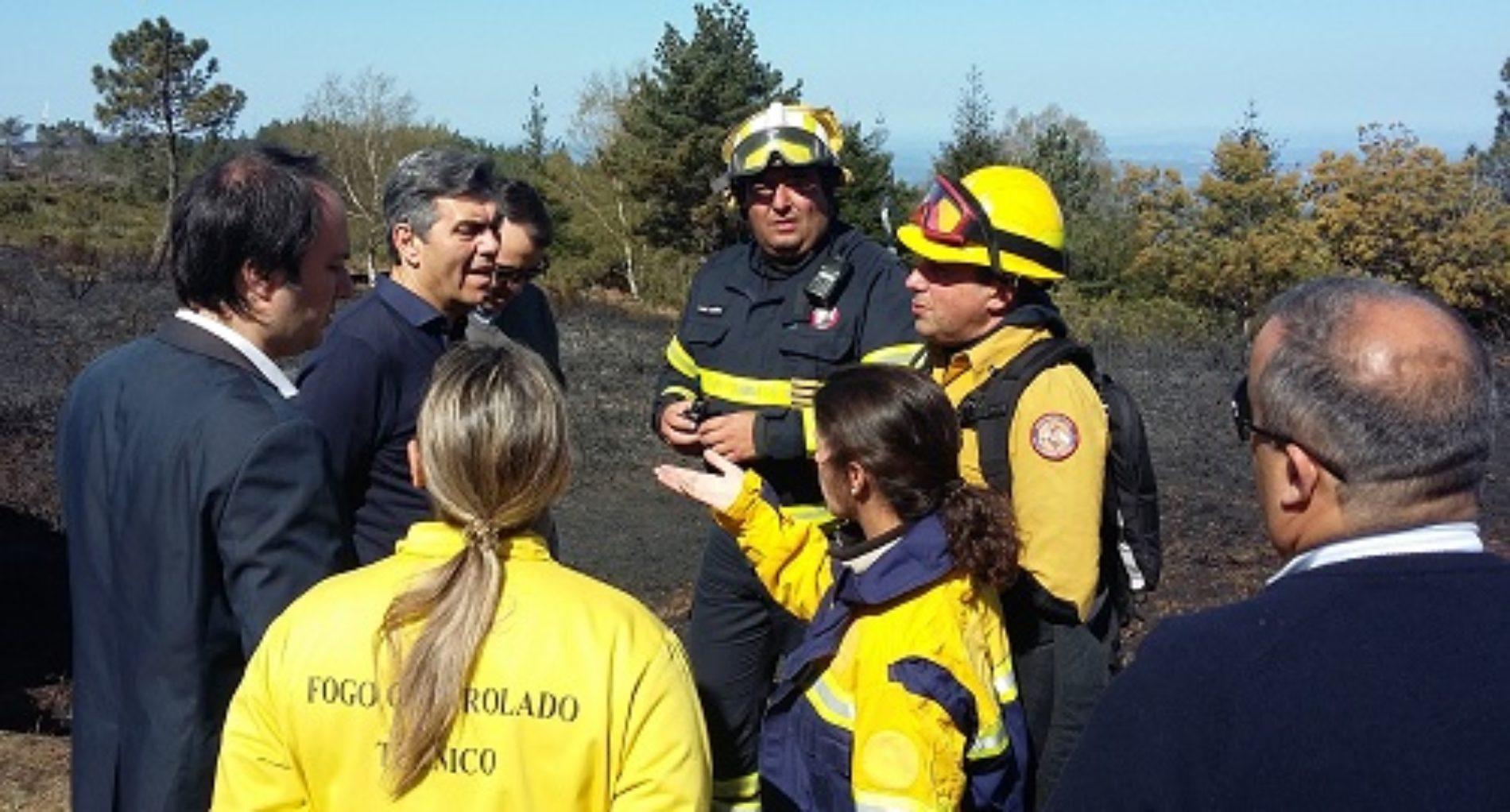 Região de Coimbra com ações de fogo controlado