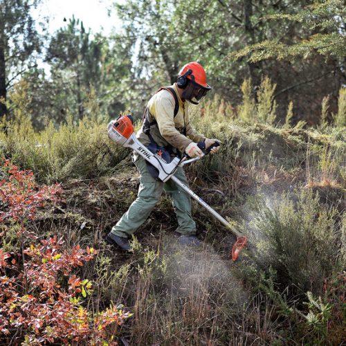 GNR pode multar por falta de limpeza de terrenos a partir de 1 de junho