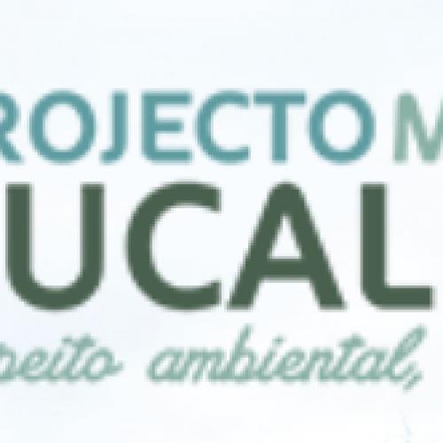 Projecto Melhor Eucalipto com sessões de informação para produtores florestais