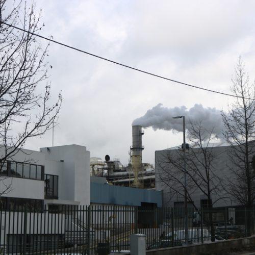 Sonae Arauco promove ação de reflorestação em Oliveira do Hospital