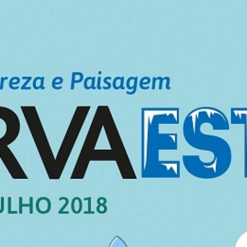 Gouveia recebe primeiro festival ObservaEstrela