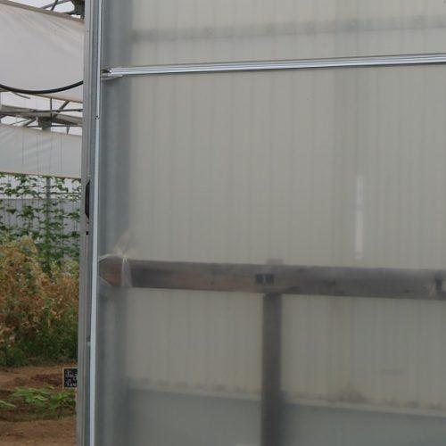 """Missão Sorriso apoia """"Casa da Obra"""" em projeto de recuperação das estufas e promoção de alimentação saudável"""
