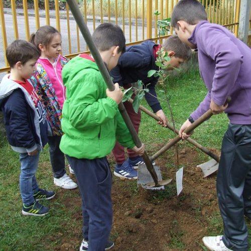 Oliveira do Hospital assinalou Dia Mundial do Ambiente com plantação de árvores