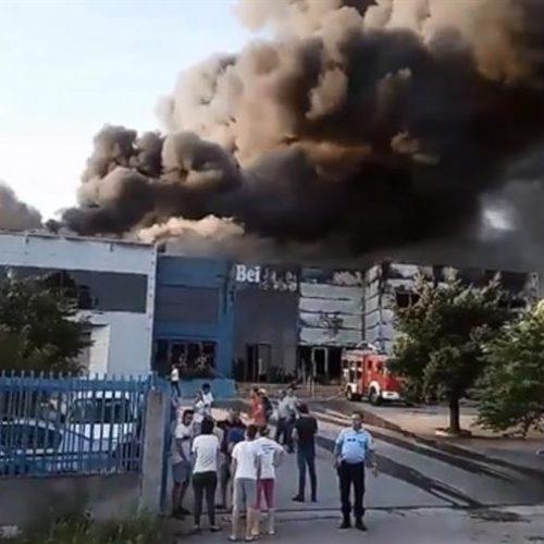 Empresa de congelados Beiragel em Viseu consumida pelas chamas