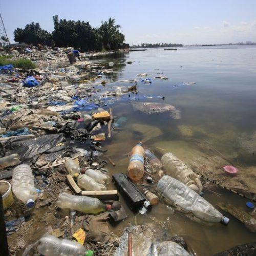 Luta contra o plástico marca Dia Mundial do Ambiente
