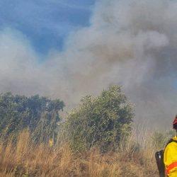 Vinte e três concelhos de sete distritos em risco máximo de incêndio