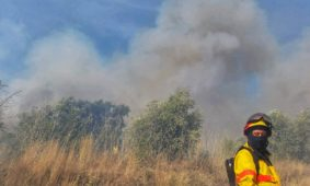 Risco de incêndio vai aumentar nos próximos dias em Portugal continental