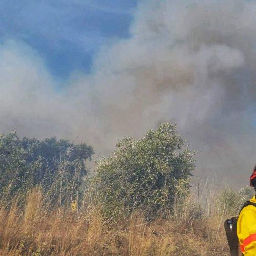 Viseu: Dominado incêndio em Penedono