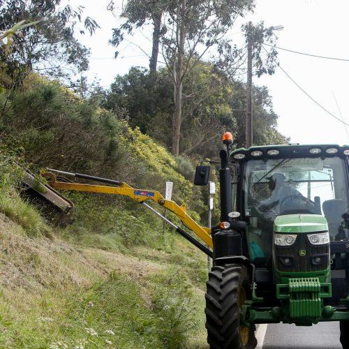 Município de Viseu manda limpar IP5 e remete fatura à Infraestruturas de Portugal