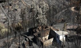 Incêndios: Pampilhosa da Serra apoia reconstrução de segundas habitações