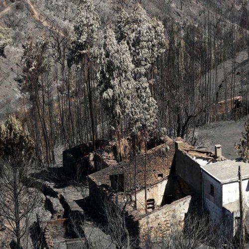 Arderam quase 28 mil hectares no Algarve