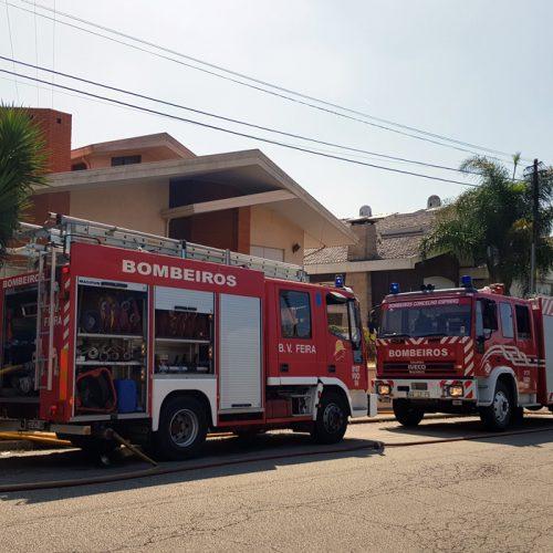 Santa Maria da Feira: Fogo destrói armazém de cortiça