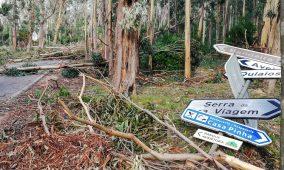 Tempestade Leslie: Governo alarga apoios a mais oito concelhos na região