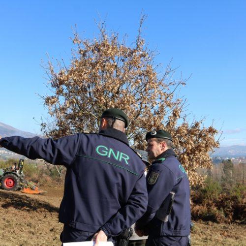 Viseu: GNR identificou dois suspeitos da prática de crime de fogo florestal