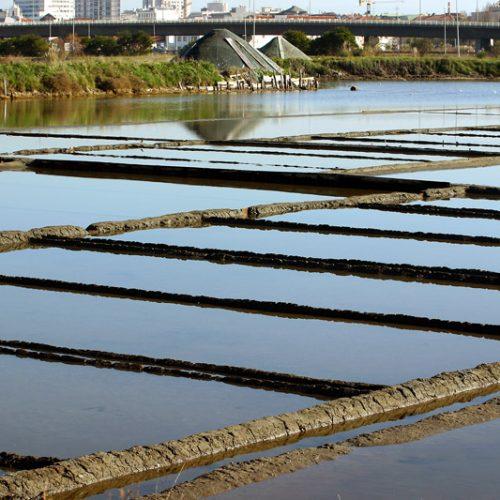 Corpo de homem foi encontrado a boiar nas marinhas de sal de Aveiro