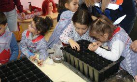 """""""Desde pequenas, as crianças têm de ser incentivadas a cuidar e preservar a floresta"""""""