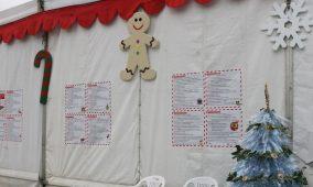 """Oliveira do Hospital: """"Largo Encantado"""" conta com inúmeras atividades para as crianças"""