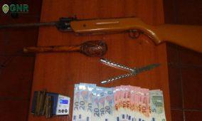 Carregal do Sal: Jovem de 20 anos detido com 94 doses de haxixe