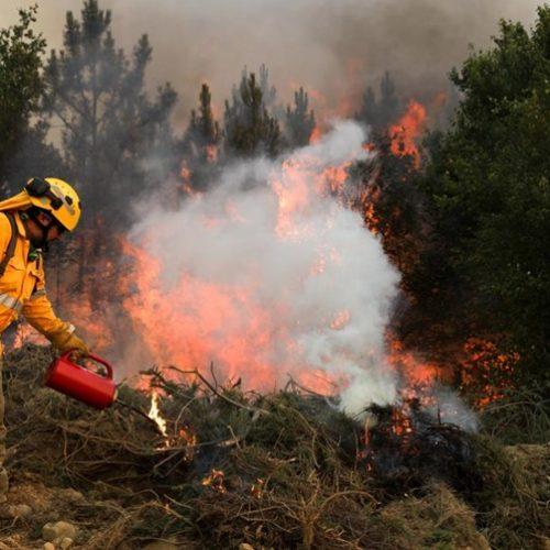 Gouveia realiza ações de fogo controlado na Serra da Estrela