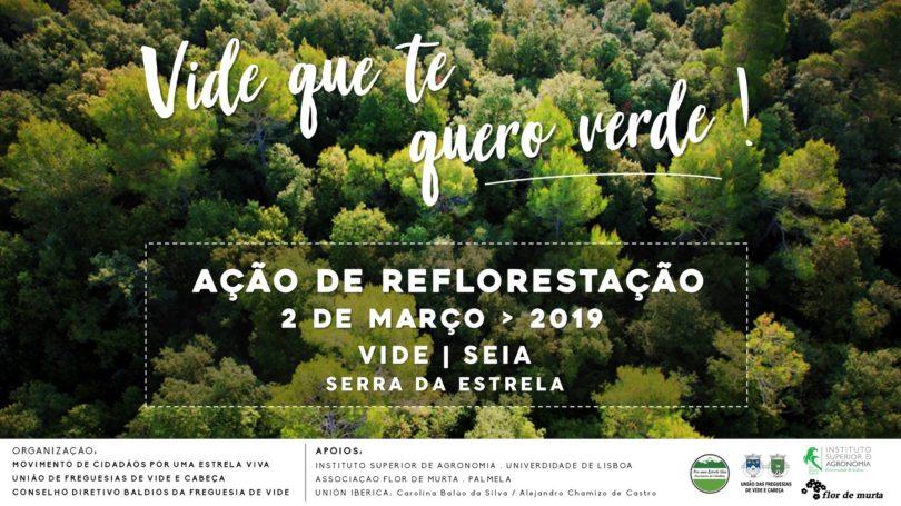 Movimento de cidadãos promove reflorestação na Vide