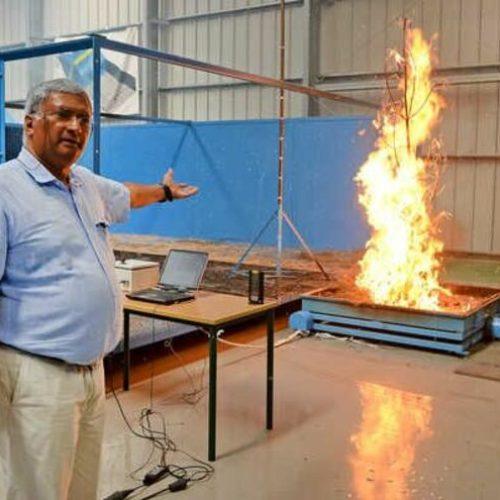 """Especialista diz que """"ainda há muito para fazer"""" na prevenção dos incêndios"""