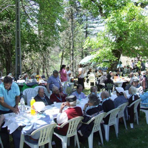 Encontro Sénior juntou 350 idosos no Dia da Espiga