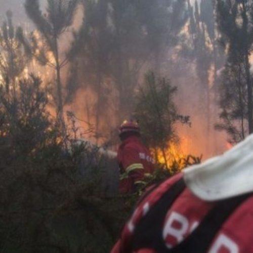 Calor coloca oito distritos em risco máximo de incêndios