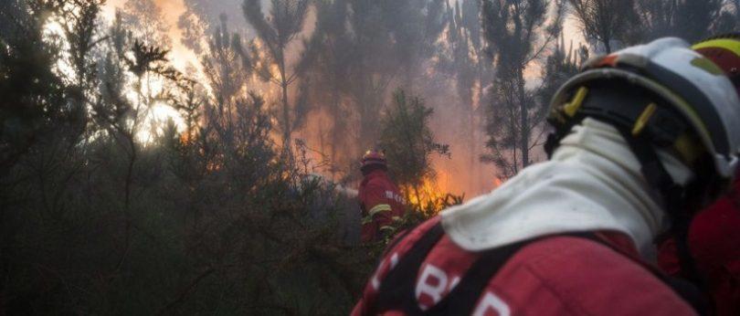 Quinze concelhos em risco máximo de incêndio. Madeira incluída
