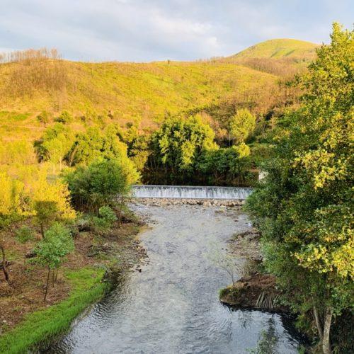 Oliveira do Hospital promove requalificação de ecossistemas ribeirinhos
