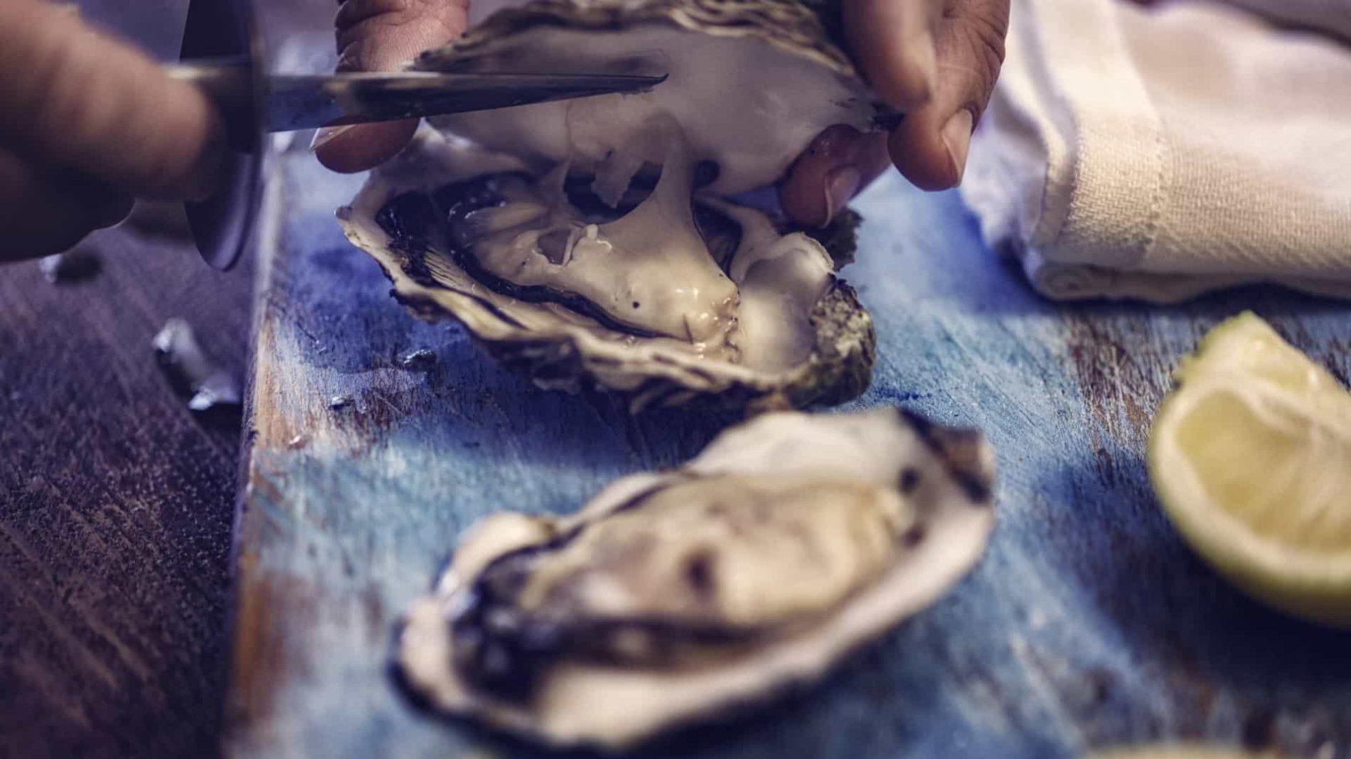 Região: Apreendida quase uma tonelada de ostra no valor de 9.500 euros