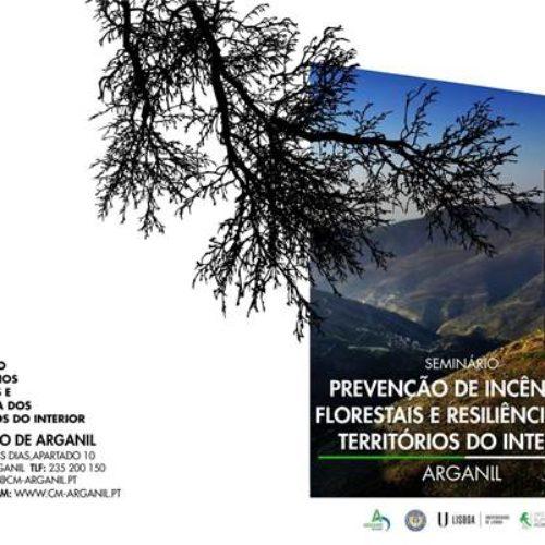 Arganil refloresta dois mil hectares com espécies autóctones